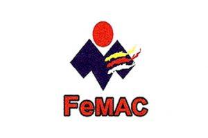 FeMAC